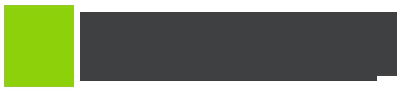 Логотип размером 300x50px